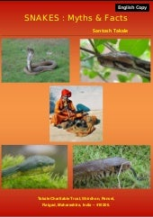 Snakes Myths & Facts in English by ...