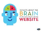 10 Facts About the Human Brain That Will Help You Create a Better Website