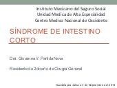 Síndrome de intestino corto