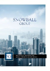 Snowball Group Capabilities Statement
