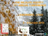 Snowbird Invitation Annual Conference