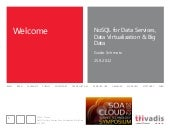 NoSQL for Data Services, Data Virtu...