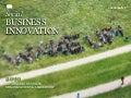 Social business - innovation, organization and leadership