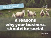 Why All Businesses Should be Social