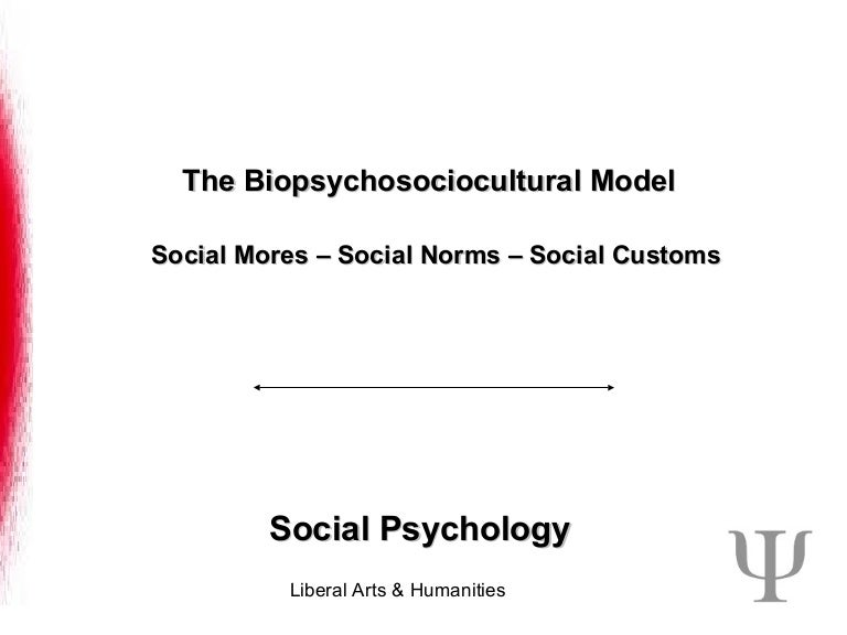 Society Norms Paper Ideas? Thanks!?
