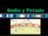 Sodio y potasio