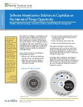 Software monetization solutions to capitalize on the internet of things opportunity
