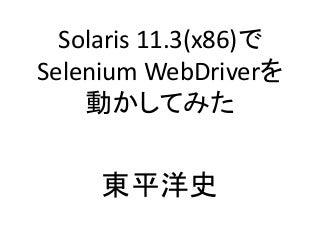 Solaris 11.3(x86)でSelenium WebDriverを動かしてみた