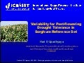 GRM 2011: Phenotyping the sorghum reference set for drought tolerance