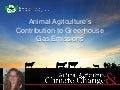 Animal Agriculture's Contribution to Greenhouse Gas Emissions