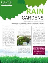 South Carolina Rain Garden Manual