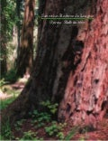 Spring bulletin 2006 ~ save the redwoods league