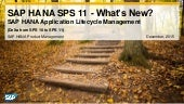 What's New in SAP HANA SPS 11 Application Lifecycle Management
