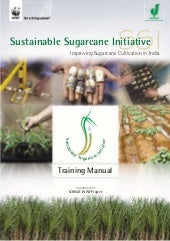 Ssi training manual on sugarcane cu...