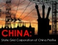 [Smart Grid Market Research] China: State Grid Corporation of China Profile, March 2012