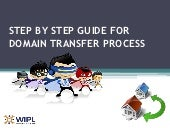 Step by step guide for domain transfer process by WIPL