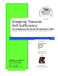 Stepping Towards Self Sufficiency: An Indigenous Economic Development Plan for CONAP - Peruvian Amazon