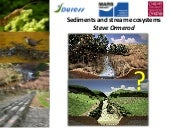 Sediments and stream ecosystems - Steve Ormerod