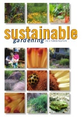 Sustainable Gardening in Stonnington