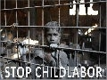 Stop Childlabor (Pp Tminimizer)
