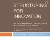 Structuring for innovation term paper