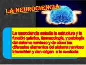 Subir neurociencia