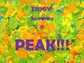 Summer review brain enhancer (pedia)