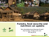 Forests, food security and nutrition: an update