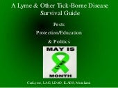 Survival guide presentation online