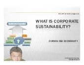 What is Corporate Sustainability?