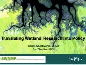 Translating Wetland Research into Policy