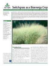 Switchgrass as a Bioenergy Crop