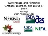 Switchgrass, energy, bioenergy, gen...