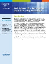 Sybase IQ Big Data