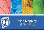 Syndicat et Mind Mapping