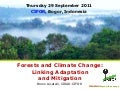Forests and Climate Change: Linking Adaptation and Mitigation