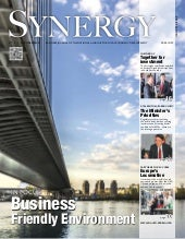 Business journal Synergy, 2nd edition