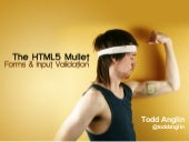 HTML5 Mullet: Forms & Input Validation