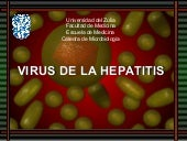 Virus del Hepatitis