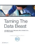 Taming the data beast