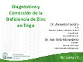 Diagnostico y correccion de la deficiencia de Zinc en trigo