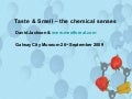 Taste & Smell: The Chemical Senses, meetforeal