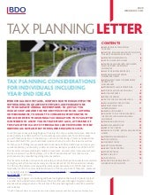 Tax Planning Tips Individuals   2009