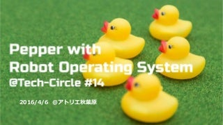 Tech-Circle PepperでROS開発をはじめよう in アトリエ秋葉原(ハンズオン)