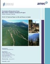 Technical Report:  Blue River Resou...
