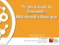 From Visual to Semantic Analysis