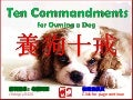 Ten commandments for owning a dog (養狗十戒)