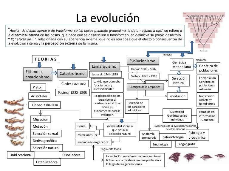 CIENCIAS NATURALES INTEGRADA 9°: LA EVOLUCIÓN Y LA SELECCIÓN NATURAL