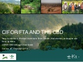 CIFOR/FTA and the CBD
