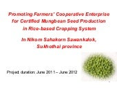 Certified Mungbean Seed Production...